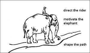 elephant_rider_path