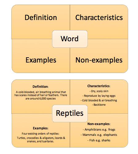 vocabulary knowledge and the  u0026 39 frayer model u0026 39